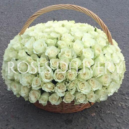 Корзина 151 «Белая Роза»