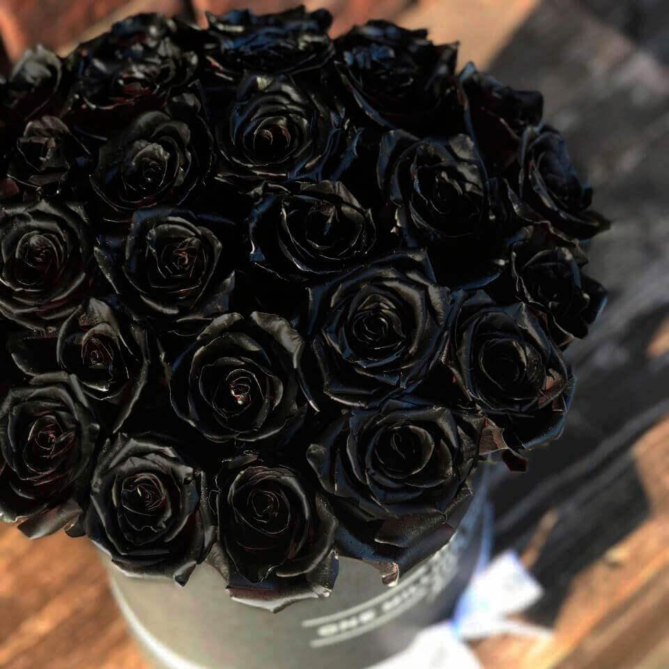 Коробка 25 «Черных Роз» Black