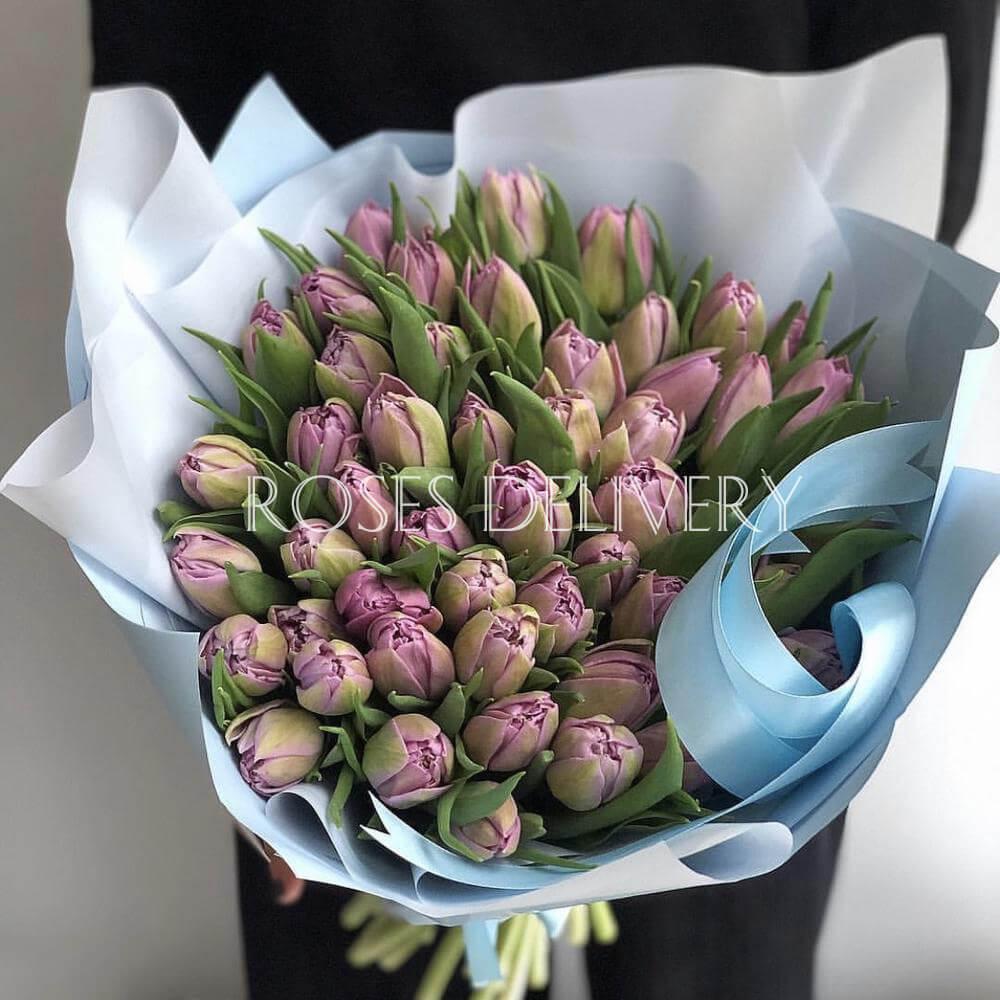 Букет 49 «Фиолетовых Тюльпанов» Blue