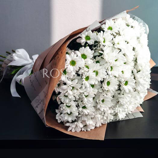 Букет 15 «Белых Хризантем» Kraft 60см