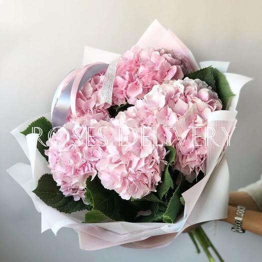 Букет 5 «Розовых Гортензий» White 55см