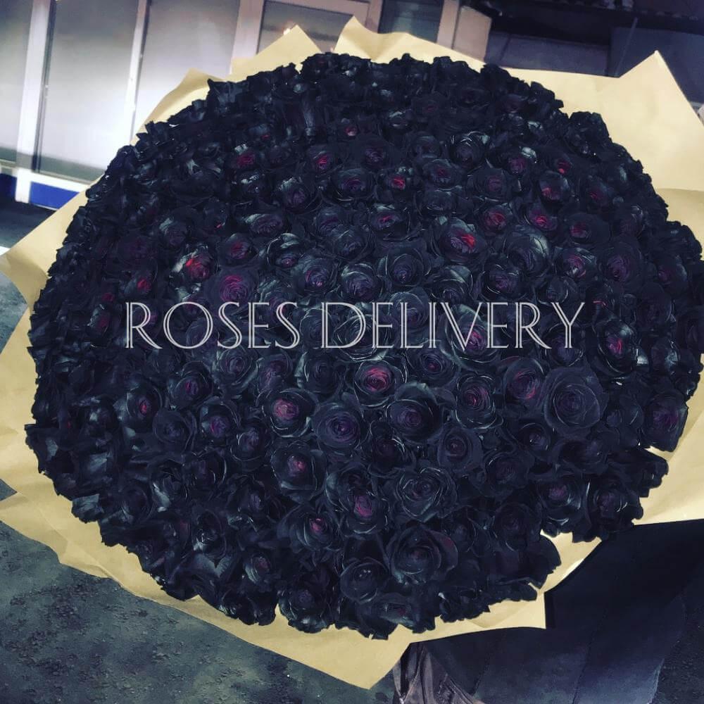 Букет 201 «Черная Роза» Cream 60см