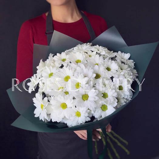 Букет 9 «Белых Хризантем» Black 60см