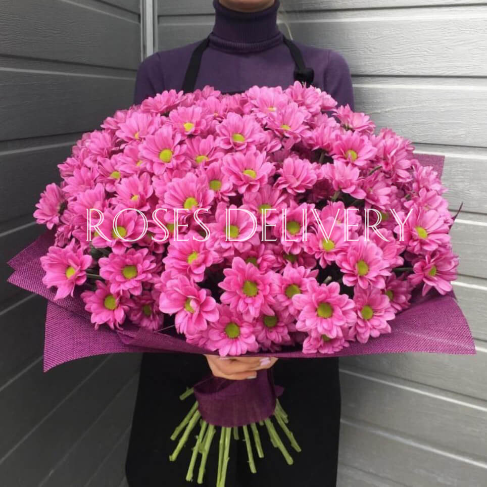 Букет 15 «Розовых Хризантем» Purple 60см