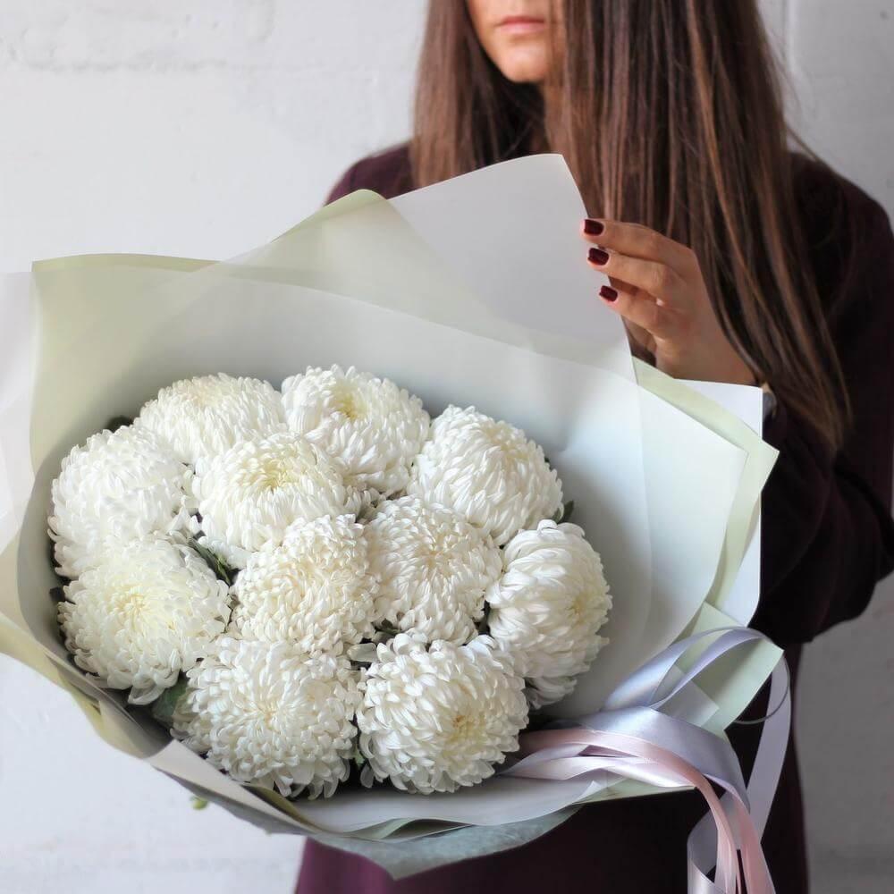 Одноголовые хризантемы