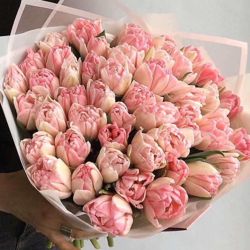Тюльпаны розовые пионовидные