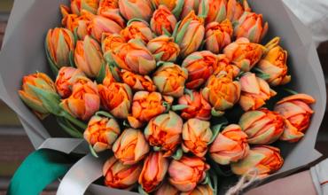 Букет 49 «Оранжевых Тюльпанов» Grey