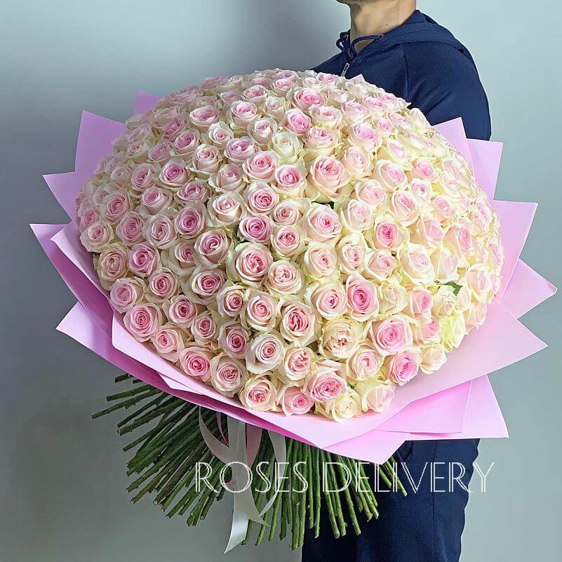 Букет 201 «Пинк Аваланш» Pink 50см