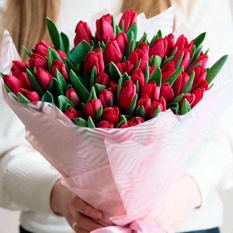 Букет 49 «Красных Тюльпанов» Pink