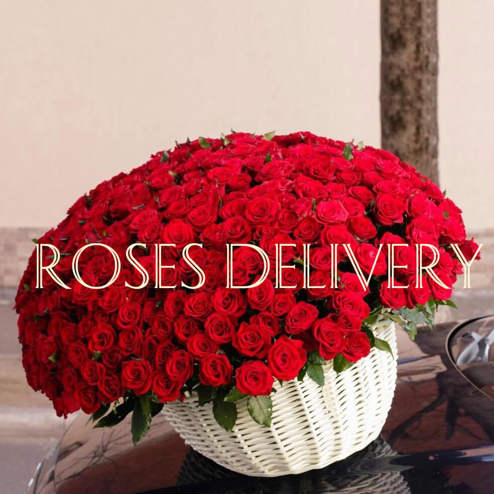 Корзина 501 «Красная Роза»