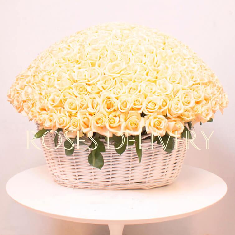 Корзина 501 «Кремовая Роза»
