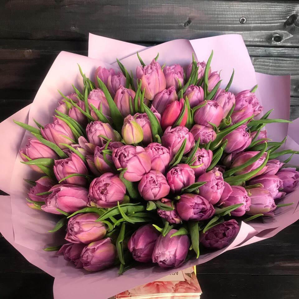 Лиловые тюльпаны купить