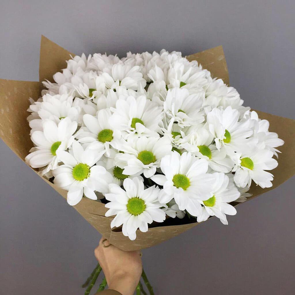 Букет 9 «Белых Хризантем» Kraft 60см