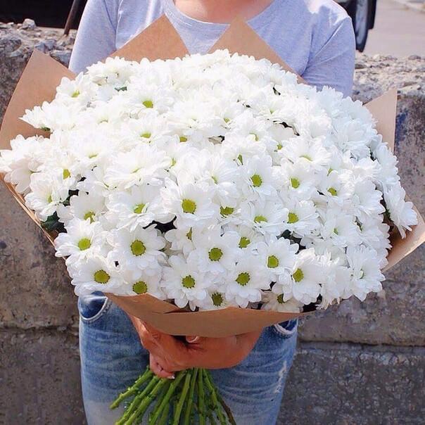 Букет 45 «Белых Хризантем» Kraft 60см