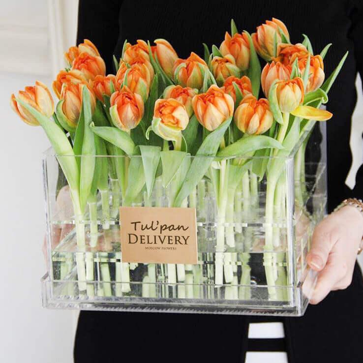 Бокс 25 «Оранжевых Тюльпанов»