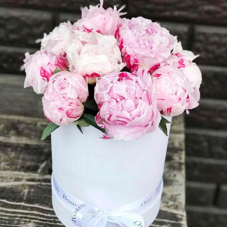 Букет 15 розовых пионов в коробке
