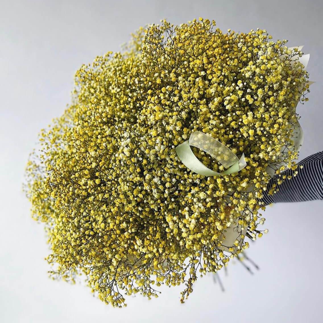 Букет 75 «Гипсофила Еллоу» 55см