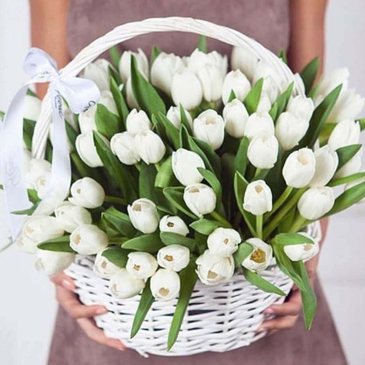 Корзина 101 «Белый Тюльпан»
