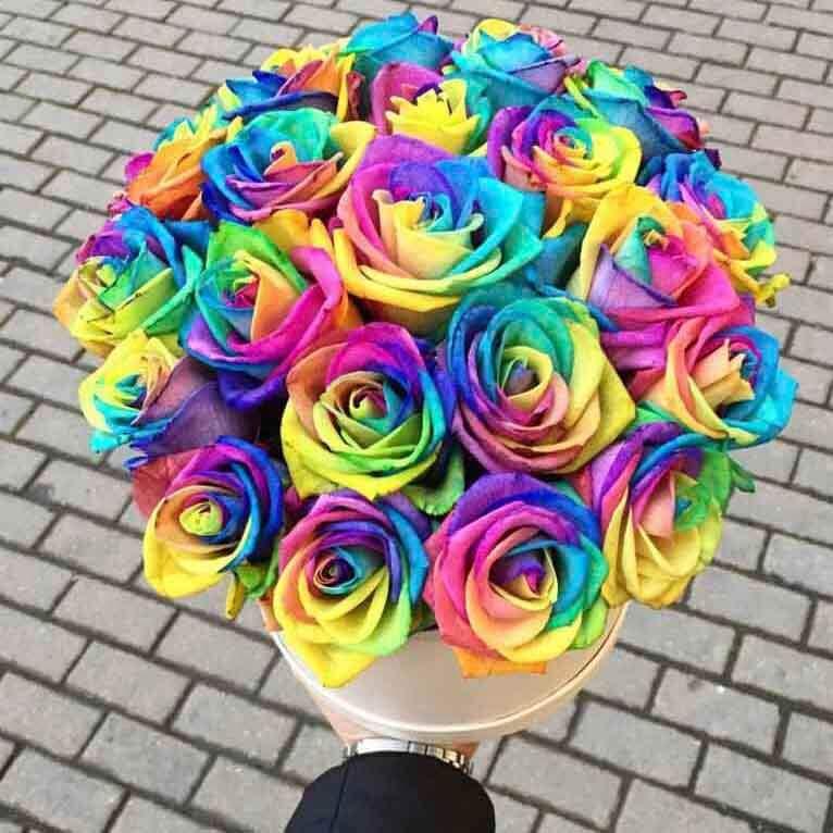 Коробка 25 «Радужных Роз» White