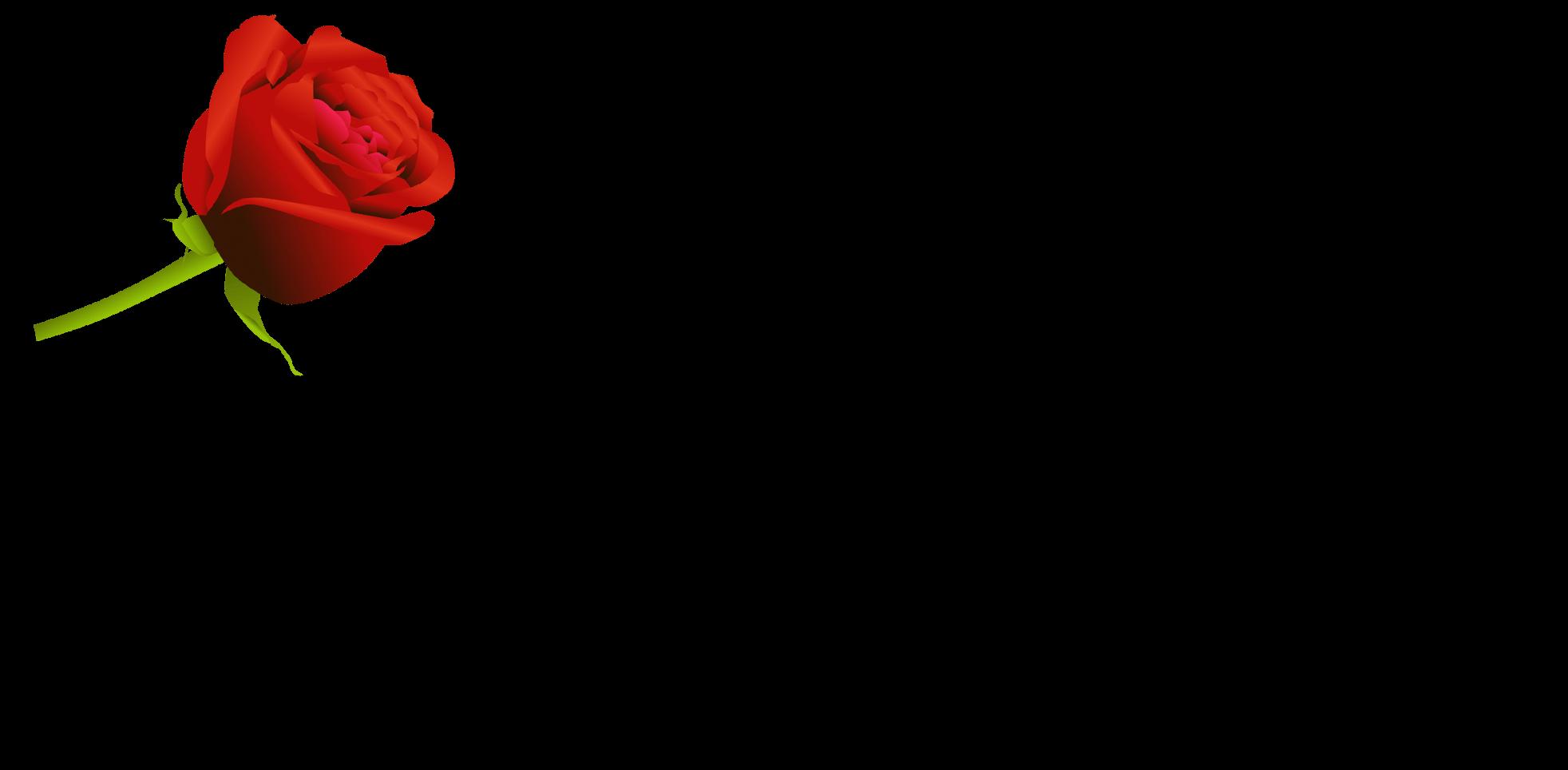 Доставка цветов от Roses Delivery